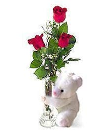 A great simple combo!  Fresh Roses and  a Teddy !